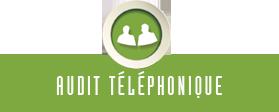Audit téléphonique